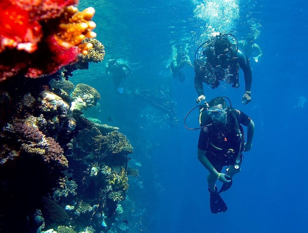 Diving Lessons for Beginners: Plan A Dive Part I