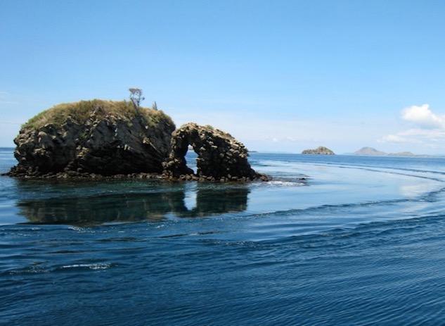 komodo national park snorkeling
