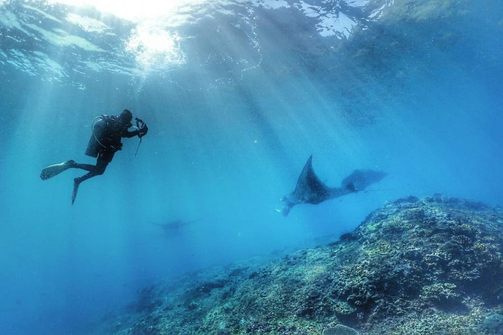 The Price of Scuba Diving in Bali; Is It Worth It?